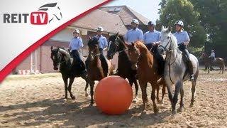 Mit dem Pferd durchs Feuer - die Polizeireiterstaffel