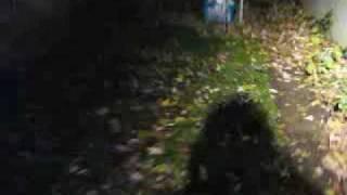 getlinkyoutube.com-Strange Creature Caught on Tape - Mothman? Alien? Flatwoods Monster?