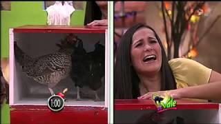 """getlinkyoutube.com-Se Vale Desafio """"los Tentones"""" 27/10/12"""