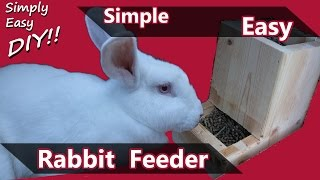 getlinkyoutube.com-DIY Rabbit Feeder