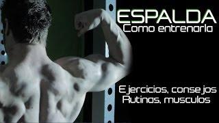 getlinkyoutube.com-COMO ENTRENAR LA ESPALDA | TODO LO NECESARIO | EJERCICIOS Y TECNICA CORRECTA
