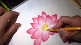 getlinkyoutube.com-ClassPlan - Drawing lotus with pastel pencil asmr