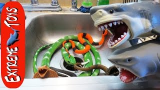 getlinkyoutube.com-The Snakes Return! Toy Sharks Save Boys from the Toy Snake Invasion.
