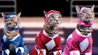 getlinkyoutube.com-Mighty Morphin Meower Rangers