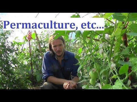La culture sur buttes 1 : permaculture et agroécologie