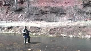 getlinkyoutube.com-Fly fishing canyon creek Arizona