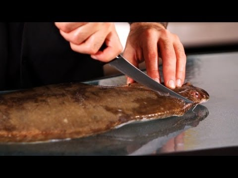 How to Fillet Flounder,  Part 2 | How to Fillet Fish