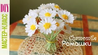 getlinkyoutube.com-Ромашки из Бумаги Своими Руками/ Chamomile of crepe paper Tutorial / DIY цветы ✿ NataliDoma