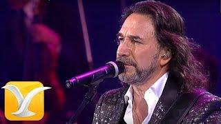Marco Antonio Solís en vivo , Festival de Viña del Mar 2016