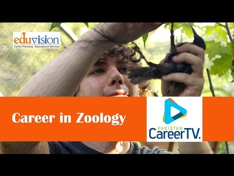Career in Zoology