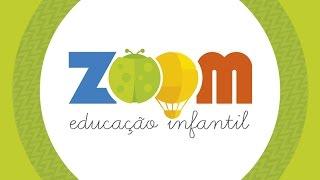 Projeto Zoom Lego