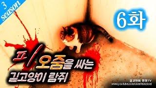 getlinkyoutube.com-6화 - 피오줌을 싸는 람쥐 [길고양이 이야기] 시즌3