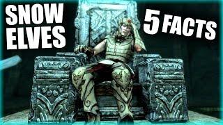 getlinkyoutube.com-Skyrim - 5 Snow Elf Facts