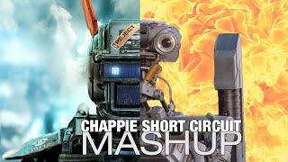 getlinkyoutube.com-Chappie & Short Circuit Mashup Trailer