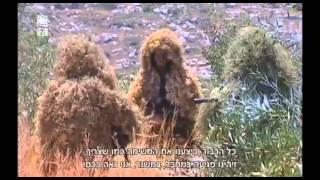 "getlinkyoutube.com-IDF Israeli Snipers   Full Movie NEW! - הצלפים של צה""ל   סרטון חדש"