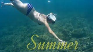 getlinkyoutube.com-Bajo El Agua, SJ9000, 4K,  A beautiful underwater world!