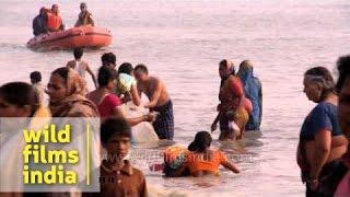 Taking a holy bath: Gangasagar mela