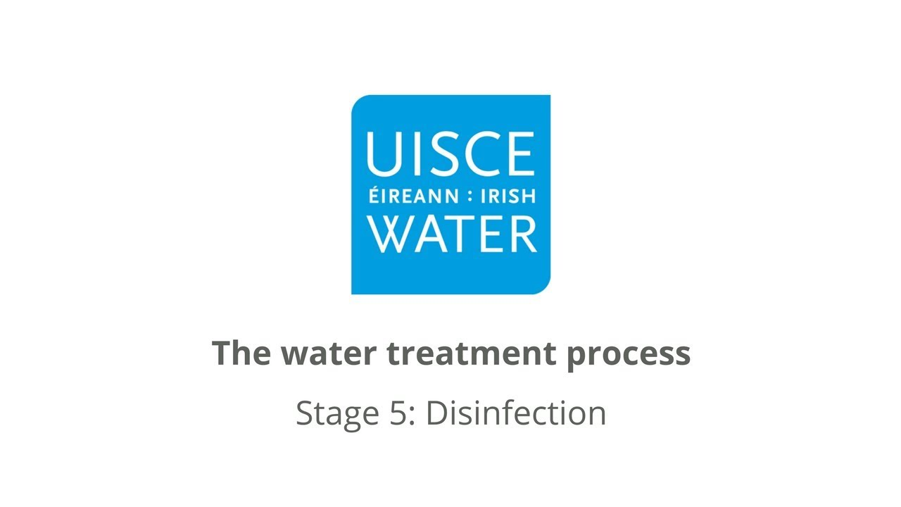 Video Thumbnail: Stage 5: Disinfection