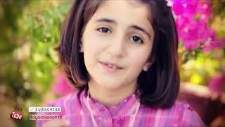 fi ha original arabic nasheed with english, arabic, urdu and turkish subtitles