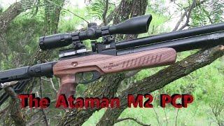 getlinkyoutube.com-Pest Control with the Ataman M2 Ultra Carbine