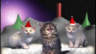 getlinkyoutube.com-Рождественская песня котов