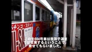 阪堺電車 災難の日