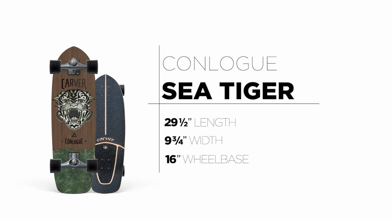 29.5″ Conlogue Sea Tiger