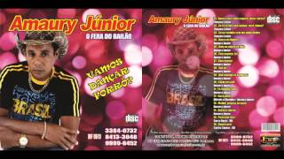 getlinkyoutube.com-Amaury Junior vol 18