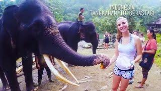getlinkyoutube.com-Tangkahan to Berastagi, Indonesia