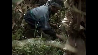 getlinkyoutube.com-Bird hunting in Khonoma forest -  Nagaland, India