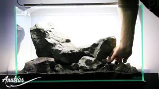 getlinkyoutube.com-Just Aquascaping & Anubias - Just Add Water
