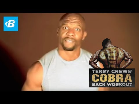 @terrycrews - Cobra Back Workout