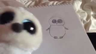 getlinkyoutube.com-How to Draw a TY Beanie Boo - Drawing Tutorial by Poppy