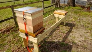 getlinkyoutube.com-Metropolis Of Propolis Episode1 Elevated Hive Stand and Fenced Enclosure