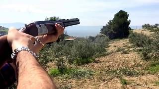 getlinkyoutube.com-Beretta silver pigeon 686
