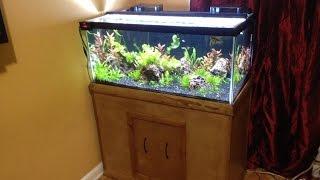 getlinkyoutube.com-DIY  Stand  for a 40 gallon breeder Tank