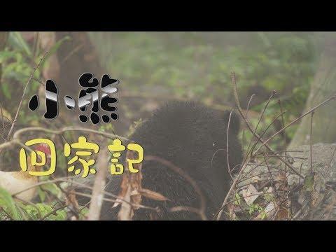 我們的島 小熊回家記(第1003集 2019-05-06) - YouTube