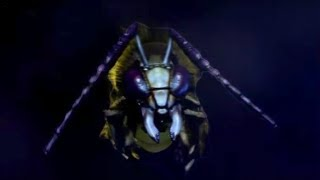 getlinkyoutube.com-Deadly Wasp Car Chase! - The Unicorn and the Wasp - Doctor Who - BBC