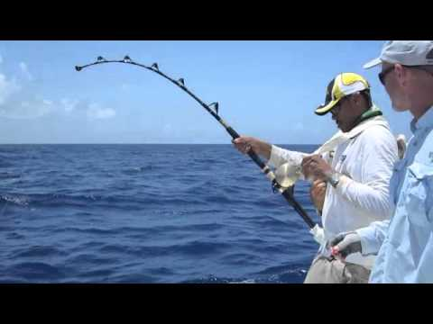 Antigua Deep Sea Fishing for Big Yellowfin Tuna, August 2011