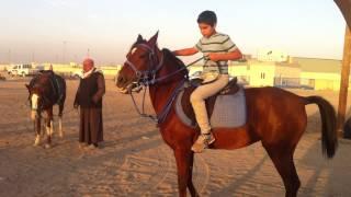 getlinkyoutube.com-جاسم الشهاب و اسماء الشهاب  ركوب الخيل 1/1/2015 الصليبية