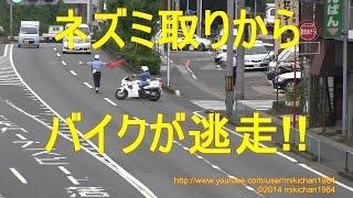 getlinkyoutube.com-白バイ 緊急走行2連発!! スピード違反バイクがUターンして逃走する瞬間!!