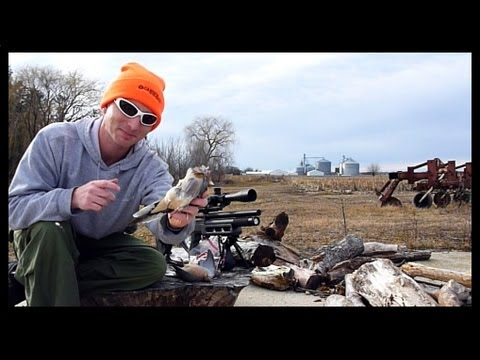 Dove Cleaning and Cooking  (Re: Dove Hunting with Edgun Matador PCP Air Rifle)