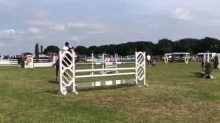 Hilmar Meyer Sporthorses Oyigene 2017 Oyten