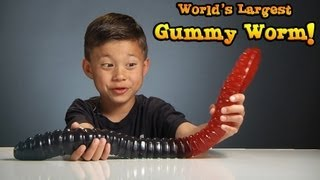 getlinkyoutube.com-WORLD'S LARGEST GUMMY WORM vs. KID!