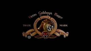 getlinkyoutube.com-MGM - Tanner the Lion
