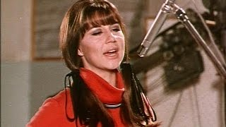 getlinkyoutube.com-The Seekers - I'll Never Find Another You STEREO 1965