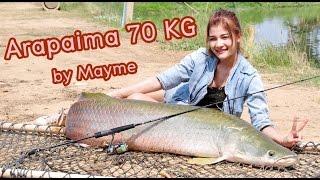 getlinkyoutube.com-catch Arapaima 70 KG by Mayme  ตกปลาอะราไพม่า 70 กิโลกรัม by เมย์มี่