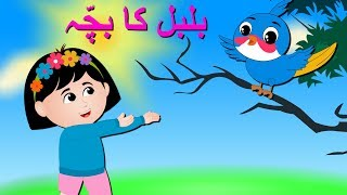 Bulbul Ka Bacha Urdu Poem | بلبل کا بچہ | Urdu Nursery Rhyme Collection for Babies