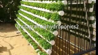 getlinkyoutube.com-زراعة الجت بواسطة الزراعة المائية