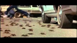 L'Horrible Invasion.mp4